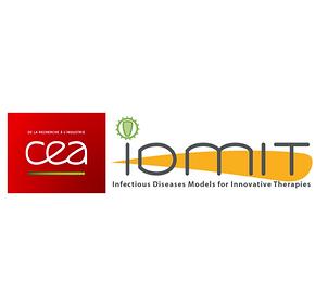 IDMIT Infrastructure (CEA)