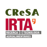 IRTA square.png