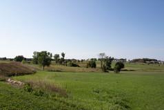 Spring Creek Golf Course