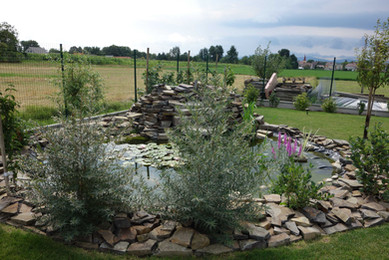 Celkový vzhľad záhrady môže doplniť aj jazierko