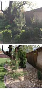 Údržba záhonov v záhrade