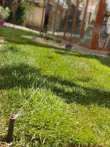 Závlahový systém Hunter a čerstvo položený kobercový trávnik