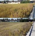 Kosenie a mulčovanie pozemku pred výstavbou