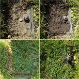 Výmena trávy pri rozprašovačoch