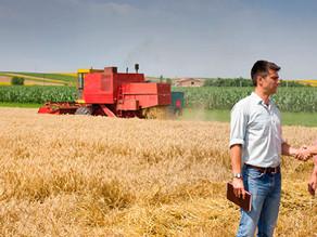 Carta Fiança para Arrendamento Rural