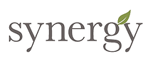 Synergy Enterprises - Empowering Climate Action