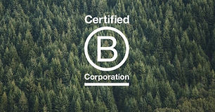 Become a BCorp | Synergy Enterprises