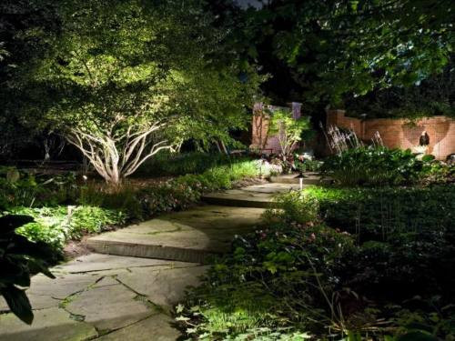 A garden at night, with pretty outdoor lighting installed by an electrician.