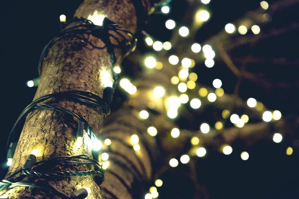 Christmas lights on a tree; lavish light displays can require electrical safety checks.
