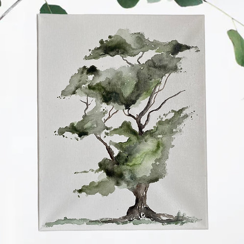 Watercolour On Canvas: Bonsai Tree