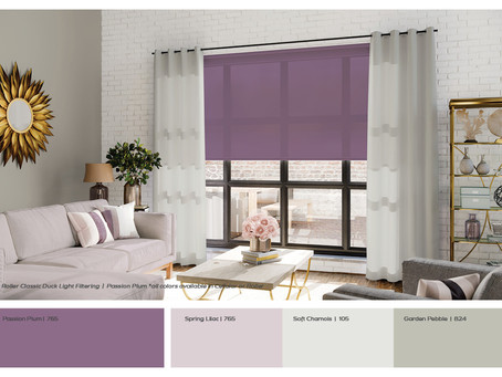 COLOUR of the MONTH - August