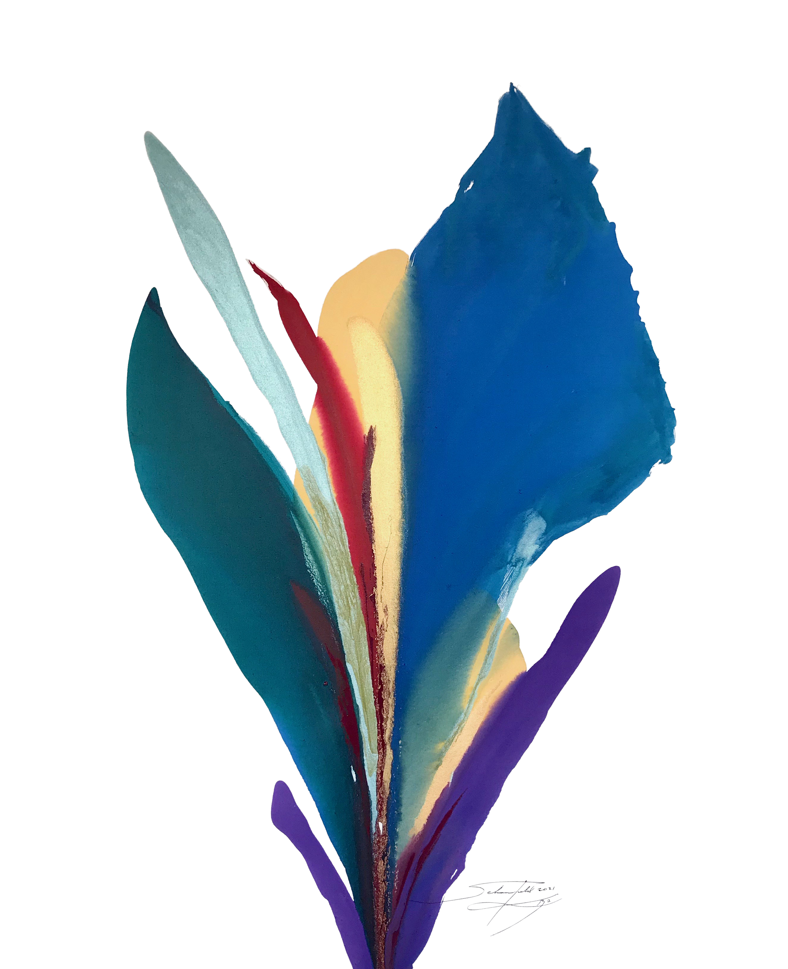 Schoenfeld, _Deep Blue Rio De Colores' #