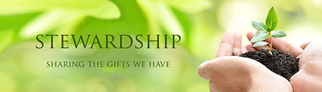 Stewardship-1024x293.jpg