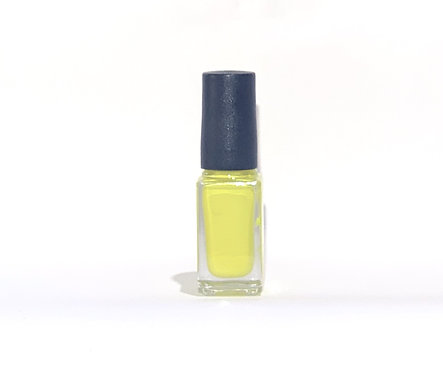 Enamel Touch Up Paint (Gloss Yellow)