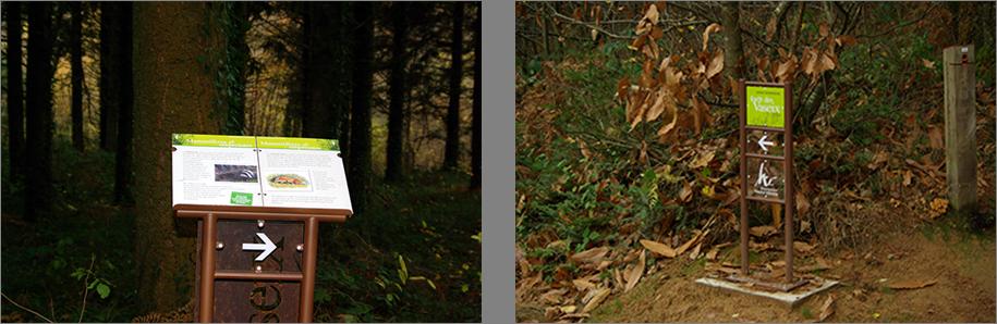 Clément Daignan parcours interprétation nature
