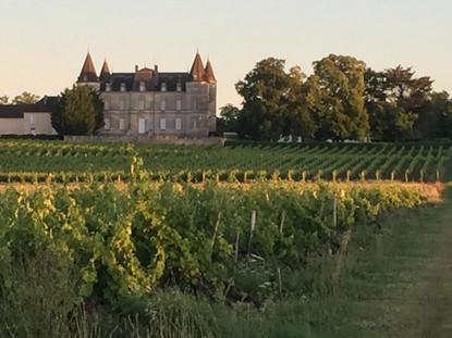 Saint Genès de Blaye - Château Perenne