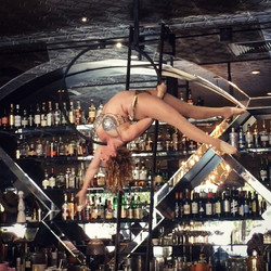 Aerial Hoop Burlesque