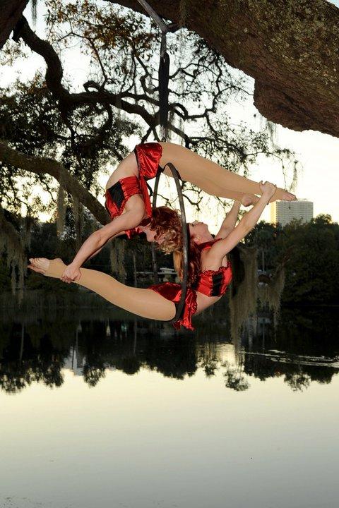 """""""Lyralicious"""" Duo Aerial Hoop"""