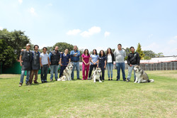Equipo Dogs and Pets