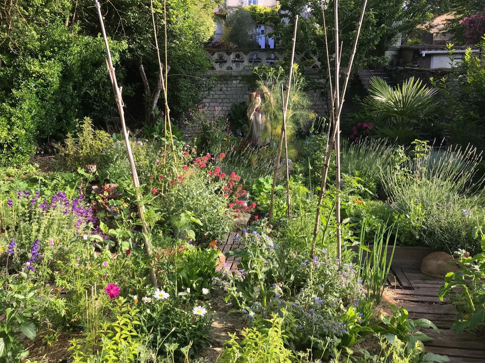 Démarrer son jardin