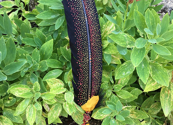 """Hand painted Saging Feather """"Embers"""""""