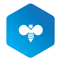 Blue Bee-01-01 (2).png