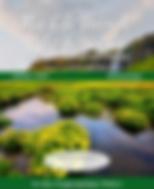 Screen Shot 2020-03-18 at 10.26.58 PM.pn