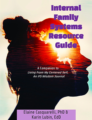 IFS ResGuide Cover.png