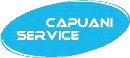 logo capuani service