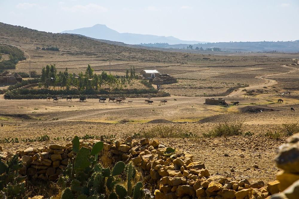 Tigray, Afar, Ethiopia