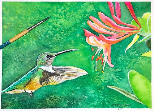 Hummingbird with orange flower