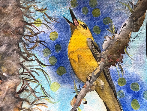 """""""Prothonotary Warbler Call"""" An Original Watercolor"""