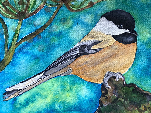 """Perched Back Capped Chickadee"" An Original Watercolor"