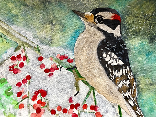 """Woodpecker In Berry Bush"" An Original Watercolor"