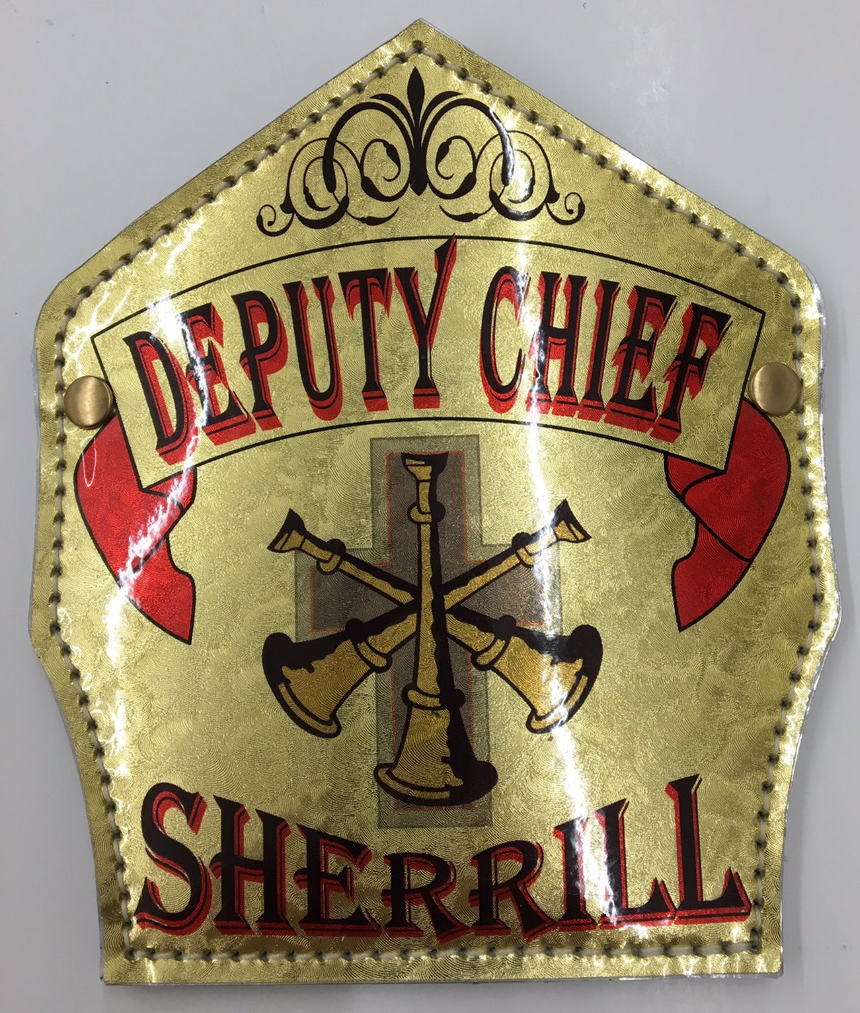CHIEF SHIELD_edited
