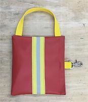 covid bag.jpg