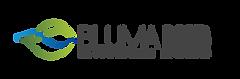 Logo_Bluma_Preto.png