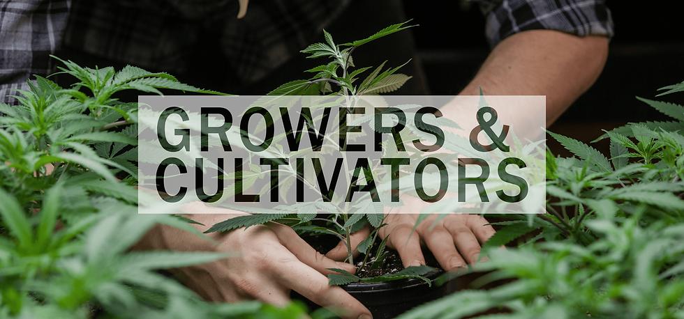 marijuana farmer final graphic-min.png