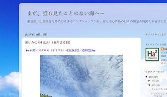 母島ブログ