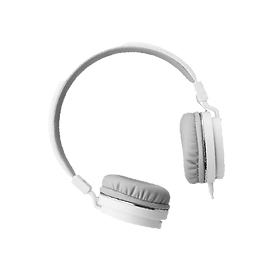headphone png.png