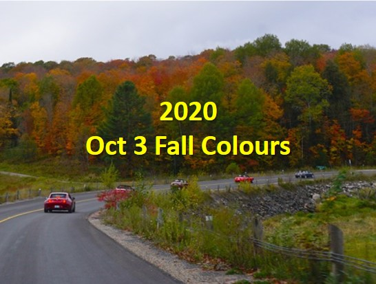 Fall Colours Oct 3 Cover
