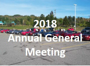 Annual General Meeting for 2018