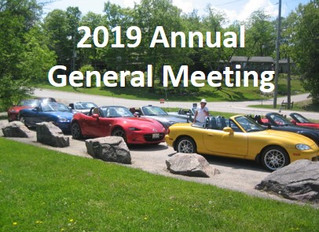 Annual General Meeting for 2019