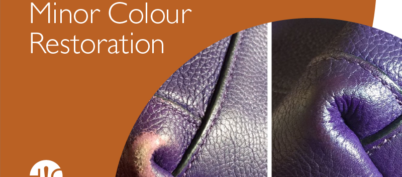 hcp-colour_02.png