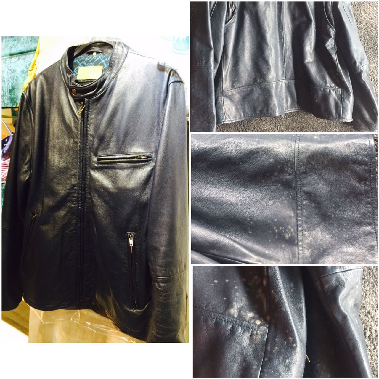 Mould Removal on Leather Jacket