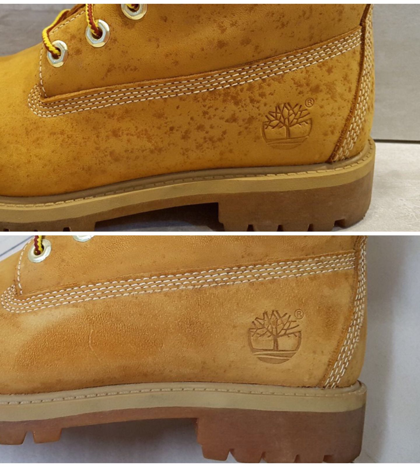 Timberland Mould Stains Removal