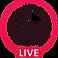 Livestream Logo black.png