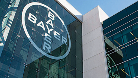 bayer predio.png