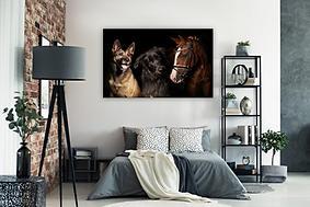 hund un pferd .jpg