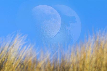 Mond ohne Schrift